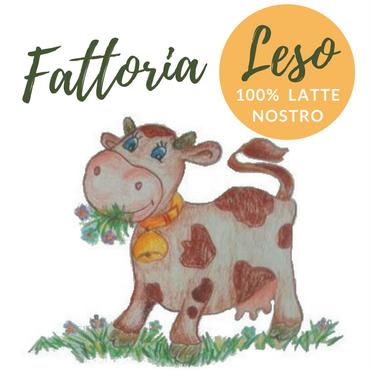 logo Fattoria Leso (1)