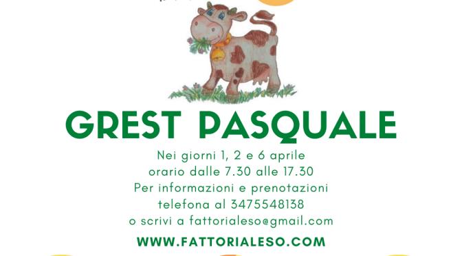 Grest Pasquale